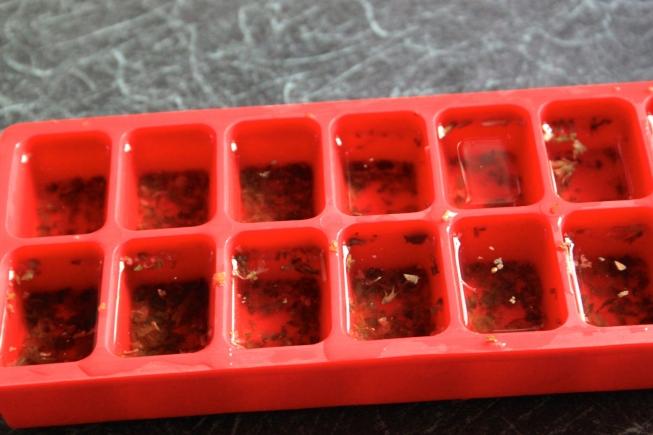 Catnip Ice Cubes