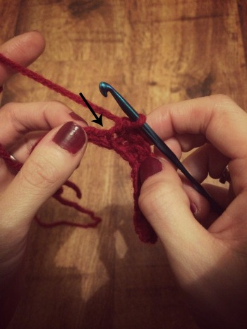 Edited Crochet Cat Toy 1